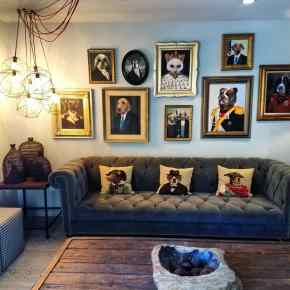 wall of dogs at 1440 Multiversity